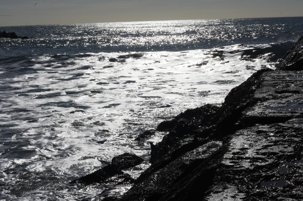 la mer en contre jour