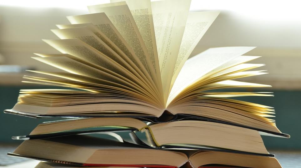 Mes 4 meilleurs livres sur la voix